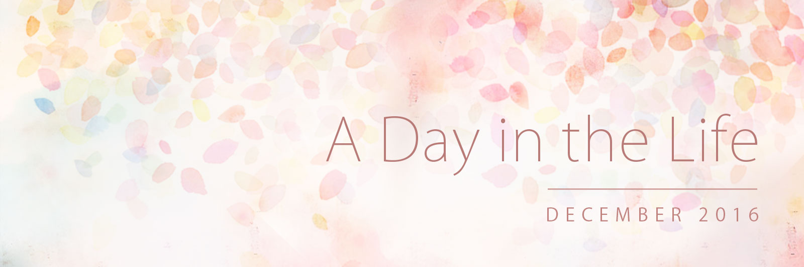Banner for 'A Day in the Life': December 2016