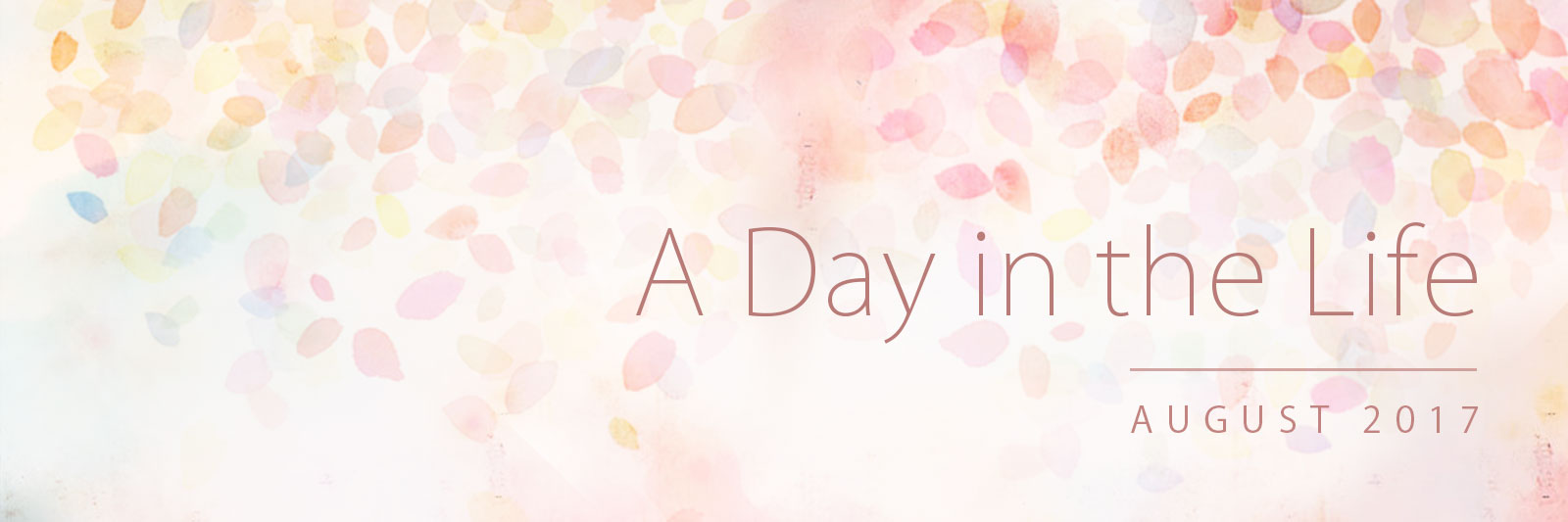 Banner for 'A Day in the Life': August 2017