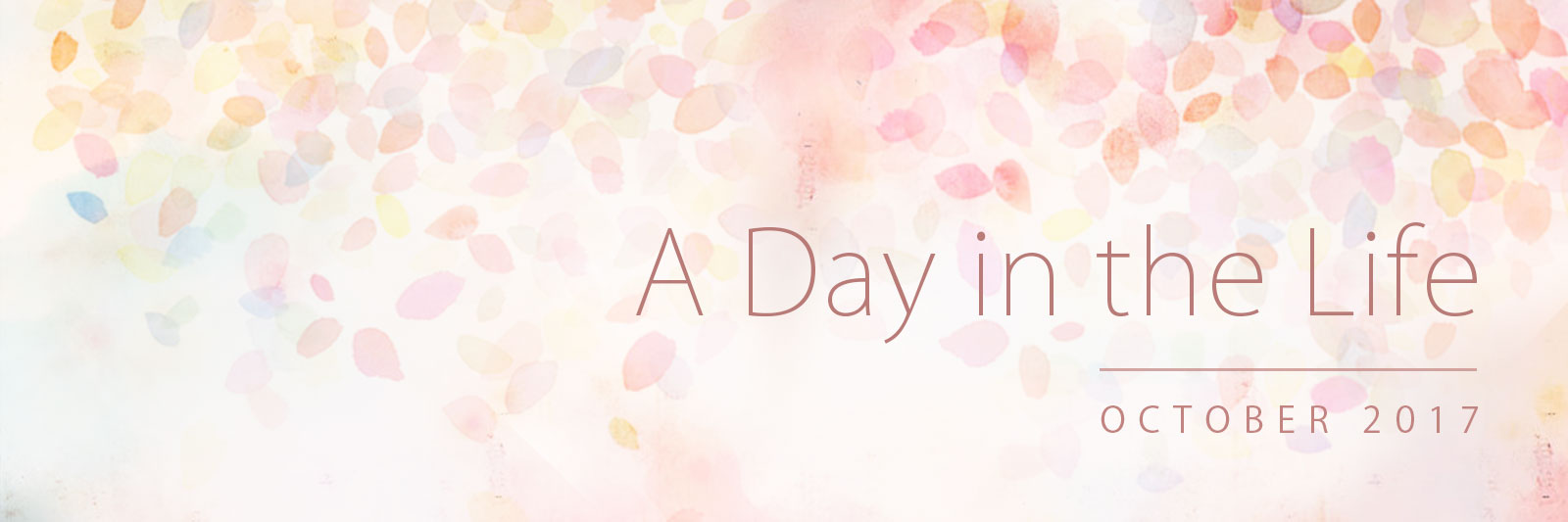 Banner for 'A Day in the Life': October 2017
