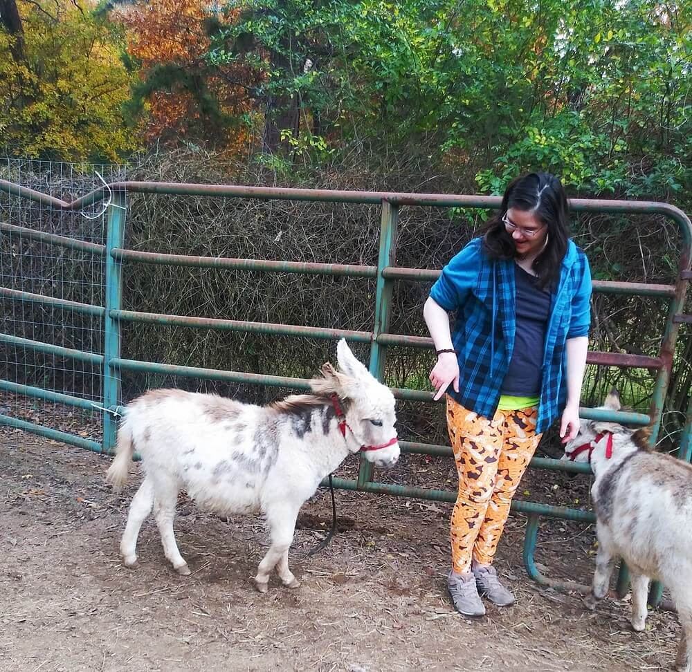 Two miniature donkeys, one approaching me and me pointing my finger at her; the other's head is through the fence